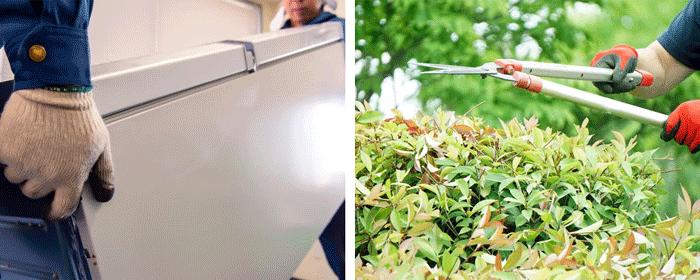 不用品回収と庭の剪定